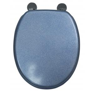 Blue Quartz Toilet Seat
